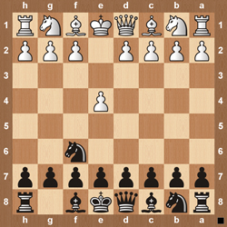 common chess openings